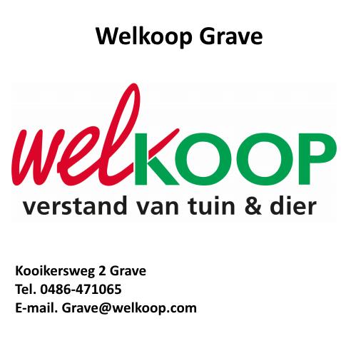 Welkoop Grave